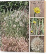 Yellow Salsify Collage Wood Print