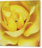 Yellow Sapphire Rose Palm Springs Wood Print