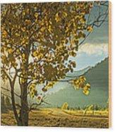Yellow School House Wood Print