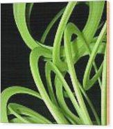 Yellow Slinky 2 Wood Print