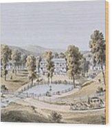 Yellow Sulphur Springs, Montgomery Wood Print