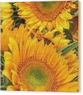 Yellow Sun Flower Burst Wood Print