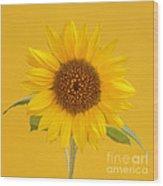 Yellow Sunflower On Yellow Wood Print