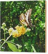 Yellow Swallowtail On Yellow Lantana Wood Print