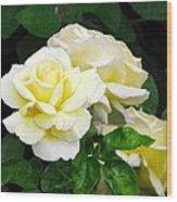 Yellow Tea Roses Wood Print