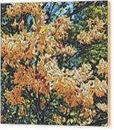 Yellow Too Wood Print