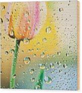 Yellow Tulip Reflecting In Water Drops Wood Print