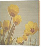 Yellow Tulips Wood Print by Diana Kraleva