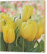 Yellow Tulips In The Spring Garden Wood Print
