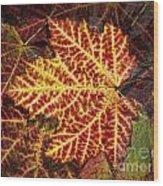 Yellow Veins Wood Print