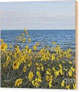 Yellow Wind Wood Print