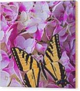 Yellow Wings Wood Print
