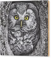 Yelloweyes - The Owl Edition Wood Print