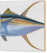 Yellowfin Tuna Wood Print