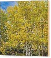 Yellows Of Fall Wood Print