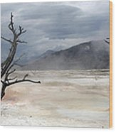 Yellowstone 21 Wood Print