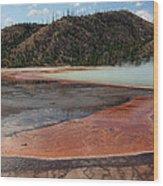 Yellowstone 27 Wood Print