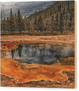Yellowstone 3 Wood Print