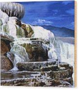 Yellowstone 8 Wood Print