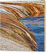 Yellowstone Earthtones Wood Print by Bill Gallagher