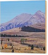 Yellowstone Electric Mountain Wood Print