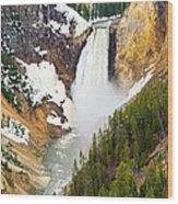 Yellowstone Falls In Spring Time Wood Print