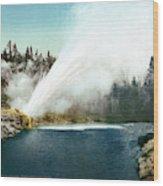Yellowstone Geyser, C1905 Wood Print
