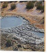 Yellowstone Geyser Wood Print