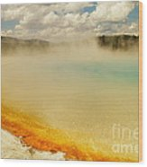 Yellowstone Hot Springs Wood Print