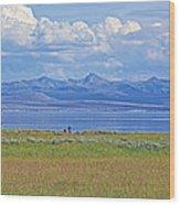 Yellowstone Lake In Yellowstone National Park-wyoming- Wood Print