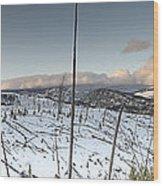 Yellowstone Morning Wood Print by David Yack