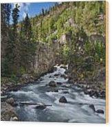 Yellowstone National Park Waterfall Wood Print