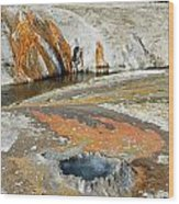 Yellowstone Small Crested Pool Wood Print