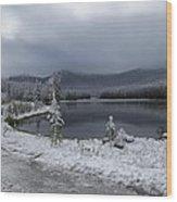 Yellowstone Snow Wood Print by Diane Mitchell