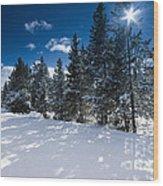 Yellowstone Sunshine Wood Print