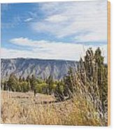 Yellowstone View Wood Print by Cindy Singleton