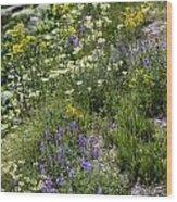 Yellowstone Wildflowers Wood Print