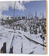 Yellowstone Winter Wood Print by David Yack