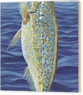 Yellowtail On The Menu Wood Print