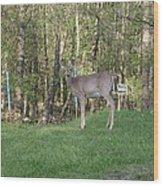 Yes Deer Wood Print