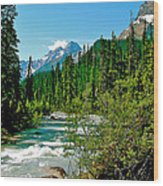 Yoho River In Yoho Np-bc Wood Print