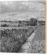 Yorkshire Dales Uk Wood Print