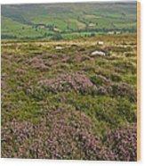 Yorkshire Moors Heather Wood Print
