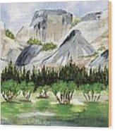 Yosemite 1 Wood Print