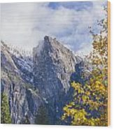 Yosemite Between Seasons Wood Print