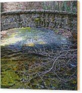 Yosemite Bridge Wood Print