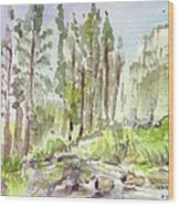 Yosemite Camp Wood Print