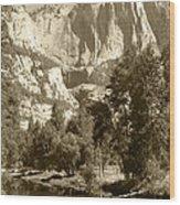 Yosemite Falls Sepia Wood Print