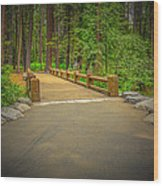 Yosemite Falls Trail Wood Print