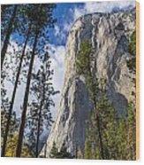 Yosemite In The Fall Wood Print